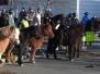 Stefanitag - Reiter- und Pferdesegnung